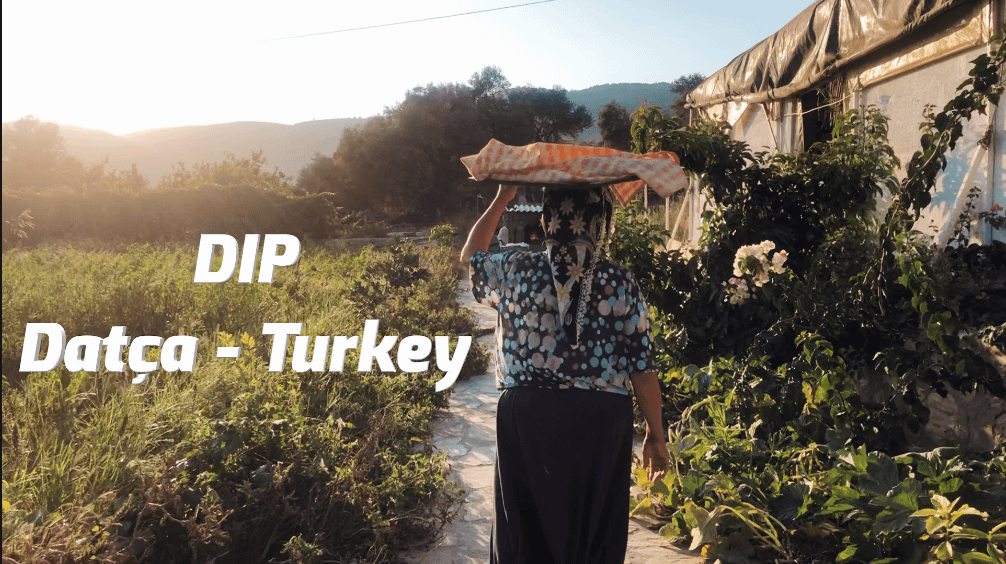 DIP – Datca -Turkey